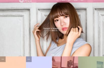 icatch-webopen